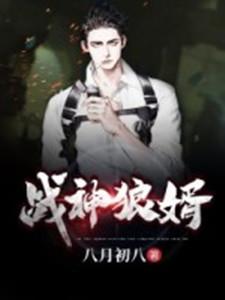《战神狼婿》主角叶新林清雪