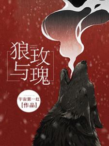 《狼与玫瑰》主角姜茴陈涞